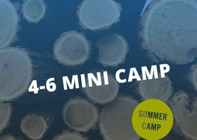 4-6 Mini Camp