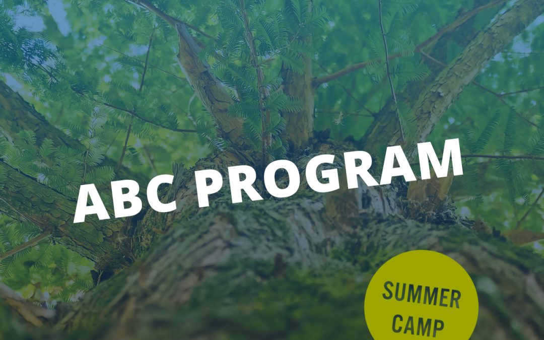 ABC Camp