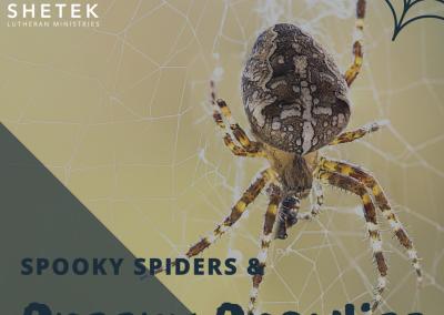 Spooky Spiders & Creepy Crawlies